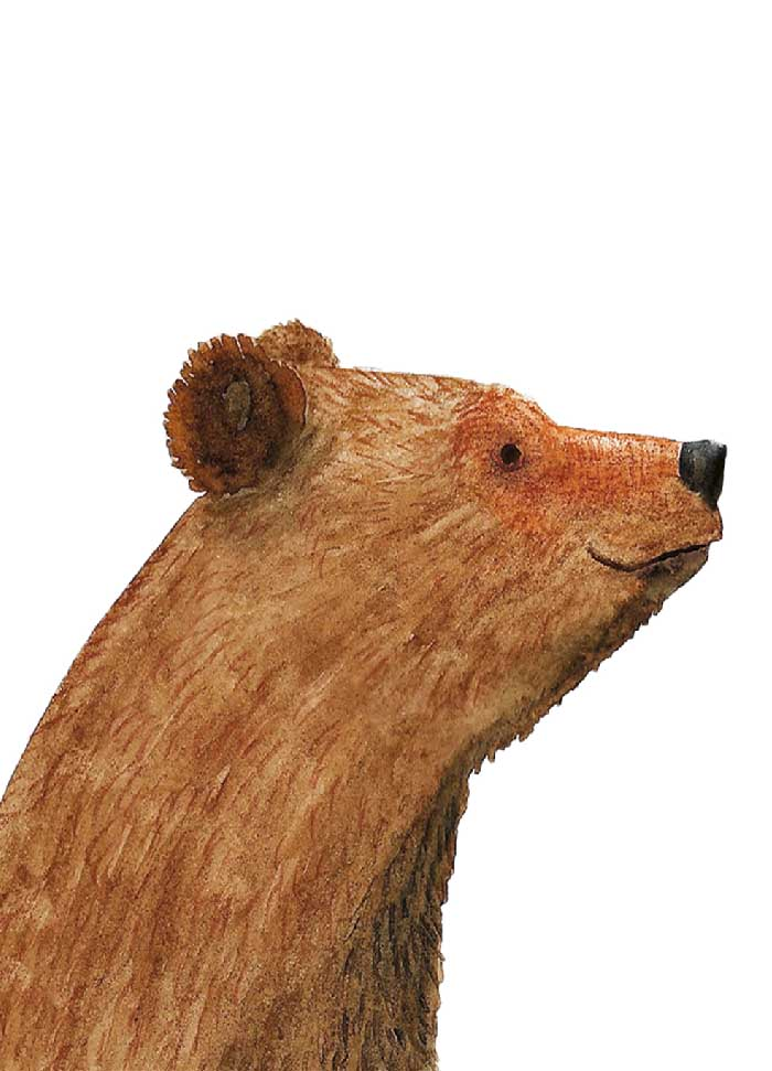 Bear - Eigen werk ©MariannevanderWalle
